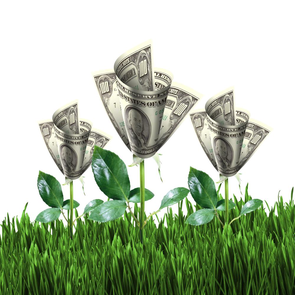 money-flowers.jpg